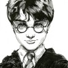 HP - Harry Potter